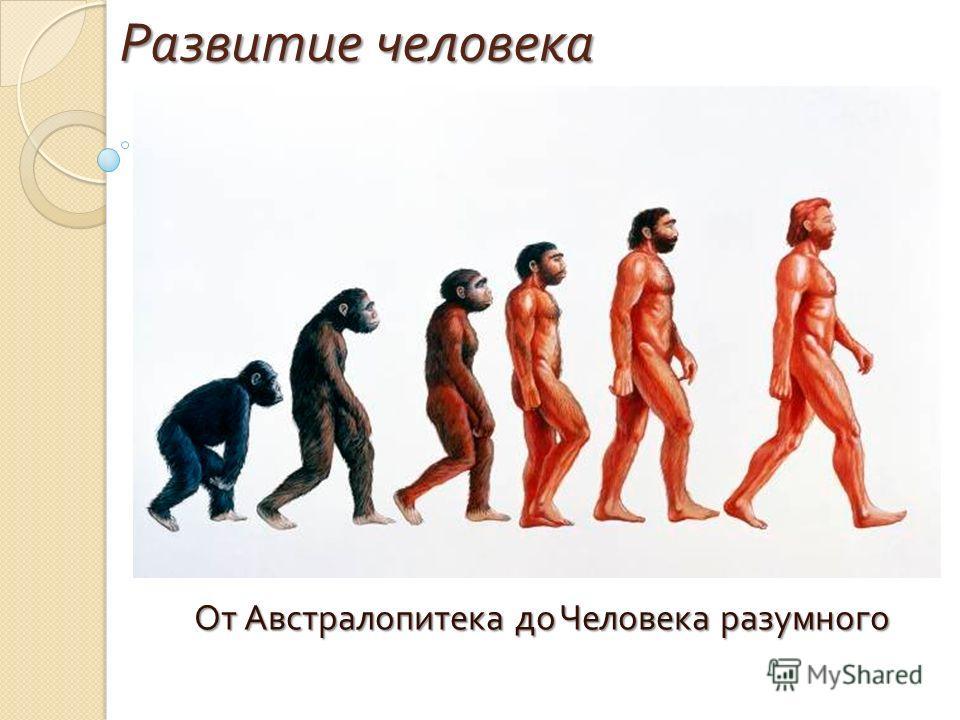 Развитие человека От Австралопитека до Человека разумного От Австралопитека до Человека разумного