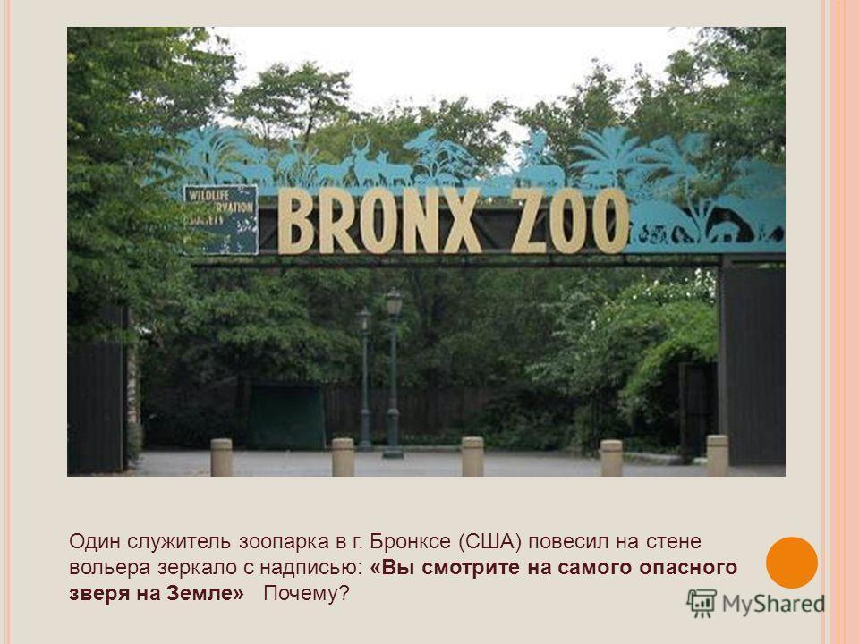 Один служитель зоопарка в г. Бронксе (США) повесил на стене вольера зеркало с надписью: «Вы смотрите на самого опасного зверя на Земле» Почему?