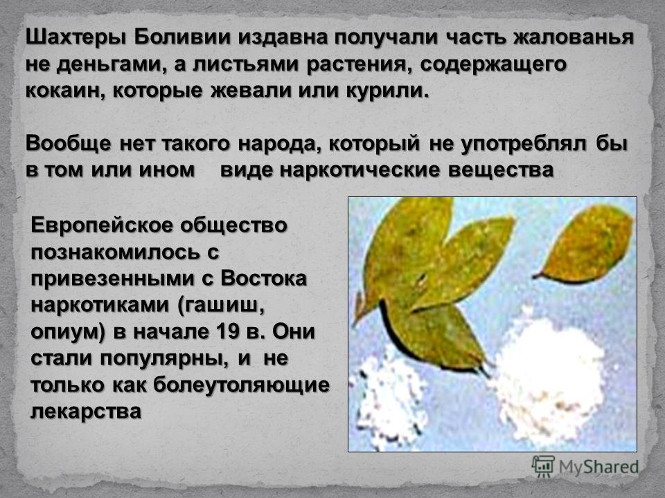 Европейское общество познакомилось с привезенными с Востока наркотиками (гашиш, опиум) в начале 19 в. Они стали популярны, и не только как болеутоляющие лекарства Шахтеры Боливии издавна получали часть жалованья не деньгами, а листьями растения, соде