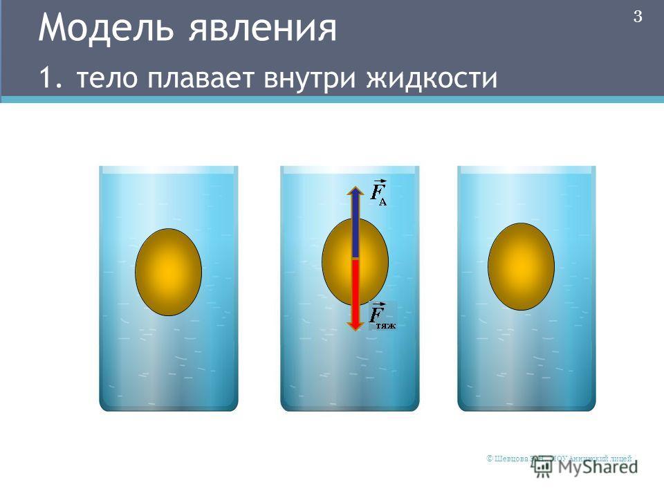 Модель явления 1. тело плавает внутри жидкости 3 © Шевцова Э. Н., МОУ Аннинский лицей
