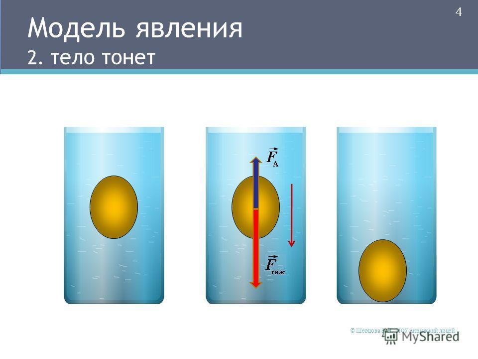 Модель явления 2. тело тонет 4 © Шевцова Э. Н., МОУ Аннинский лицей