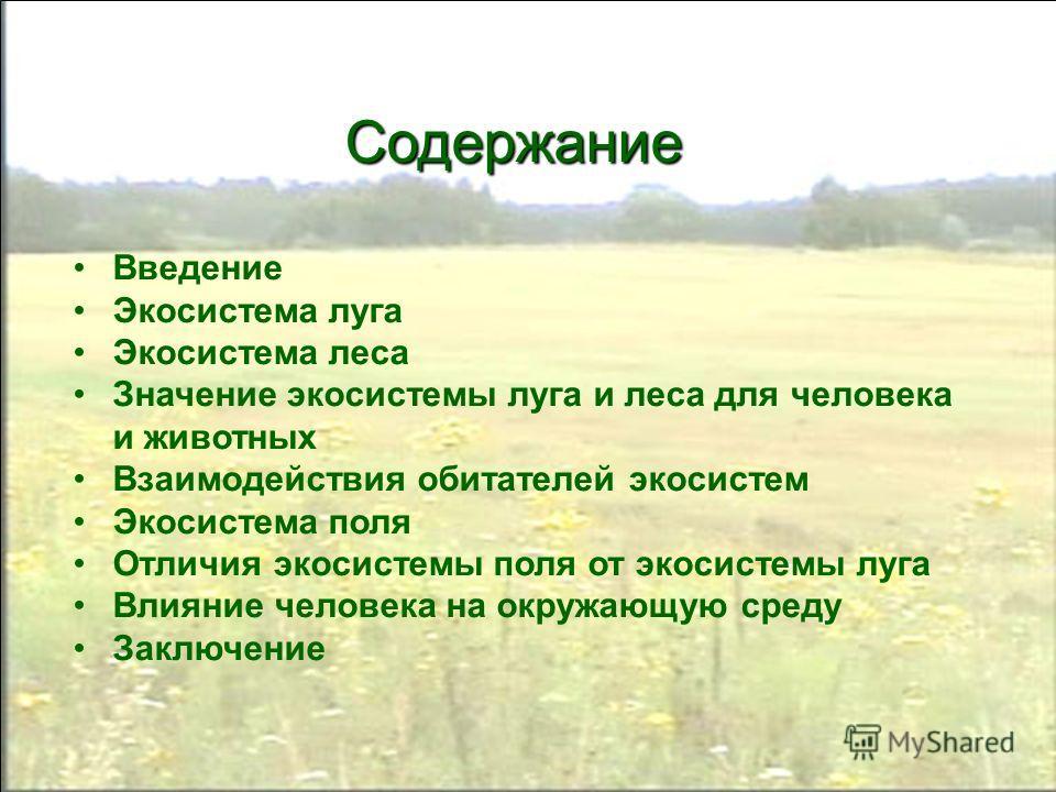 Презентация на тему Экосистемы луга леса и поля Автор Усачева  2 Содержание Введение Экосистема