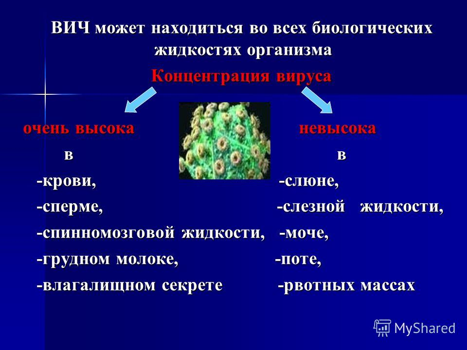 ВИЧ может находиться во всех биологических жидкостях организма ВИЧ может находиться во всех биологических жидкостях организма Концентрация вируса Концентрация вируса очень высока невысока в в в в -крови, -слюне, -крови, -слюне, -сперме, -слезной жидк