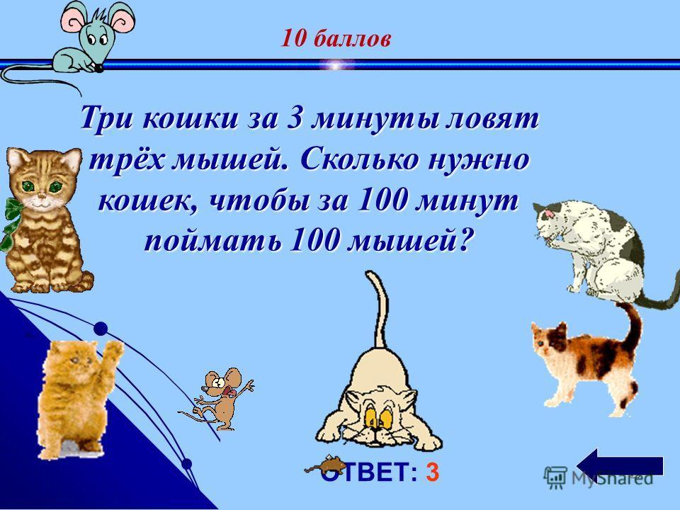 19 ОТВЕТ: 5кг. Петух, стоя на одной ноге, весит 5 кг. Сколько он будет весить, если встанет на обе ноги ? 5 баллов