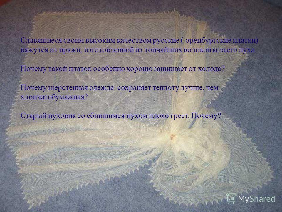 Славящиеся своим высоким качеством русские ( оренбургские платки) вяжутся из пряжи, изготовленной из тончайших волокон козьего пуха. Почему такой платок особенно хорошо защищает от холода? Почему шерстенная одежда сохраняет теплоту лучше, чем хлопчат