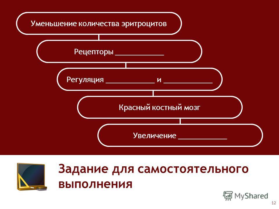 Задание для самостоятельного выполнения Уменьшение количества эритроцитов Рецепторы ____________ Регуляция ____________ и ____________ Красный костный мозг Увеличение ____________ 12