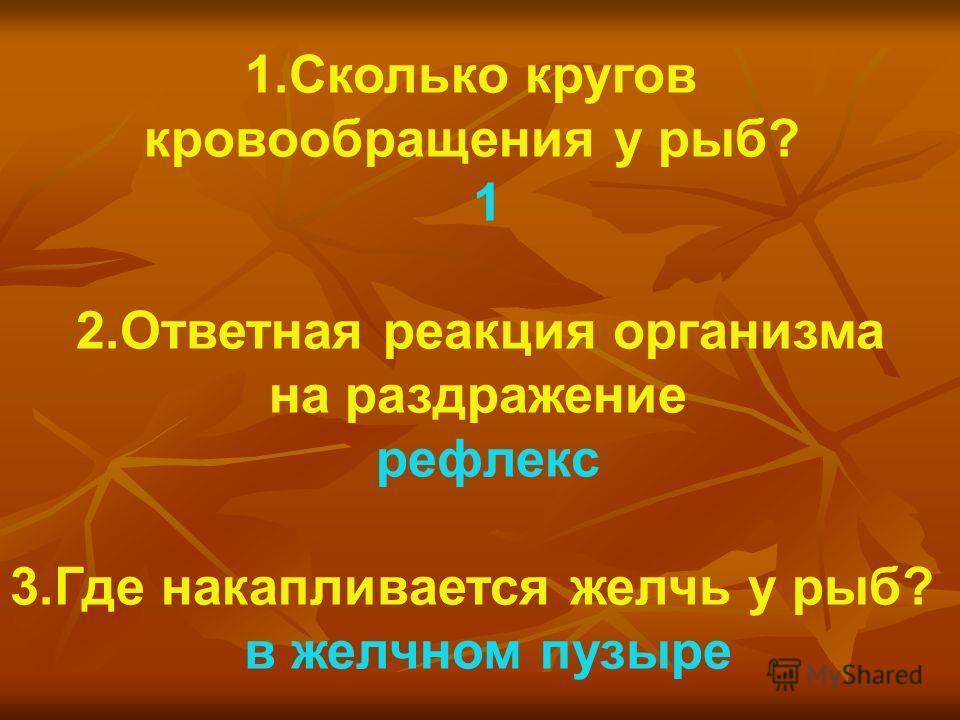 1.Сколько кругов кровообращения у рыб? 1 2.Ответная реакция организма на раздражение рефлекс 3.Где накапливается желчь у рыб? в желчном пузыре