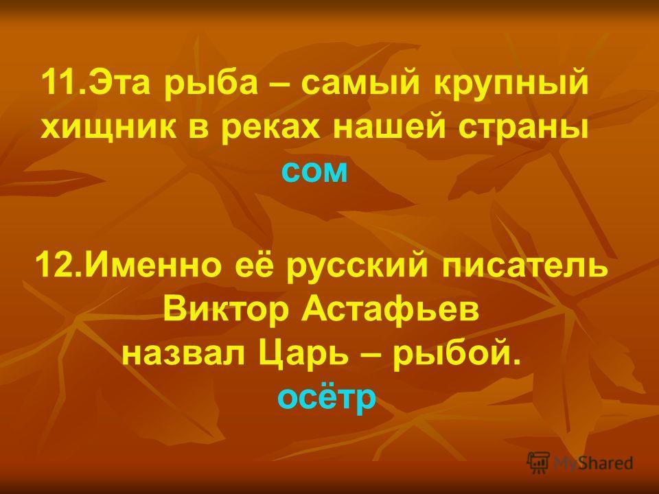 12.Именно её русский писатель Виктор Астафьев назвал Царь – рыбой. осётр 11.Эта рыба – самый крупный хищник в реках нашей страны сом