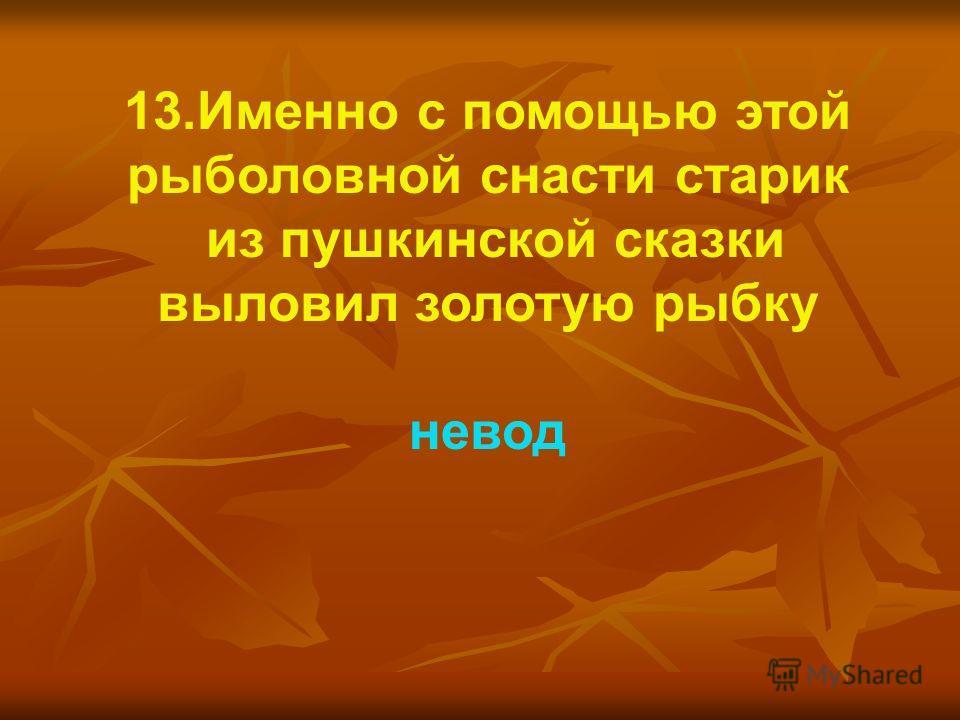 13.Именно с помощью этой рыболовной снасти старик из пушкинской сказки выловил золотую рыбку невод