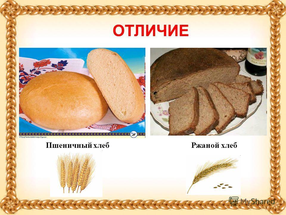 Пшеничный хлебРжаной хлеб ОТЛИЧИЕ