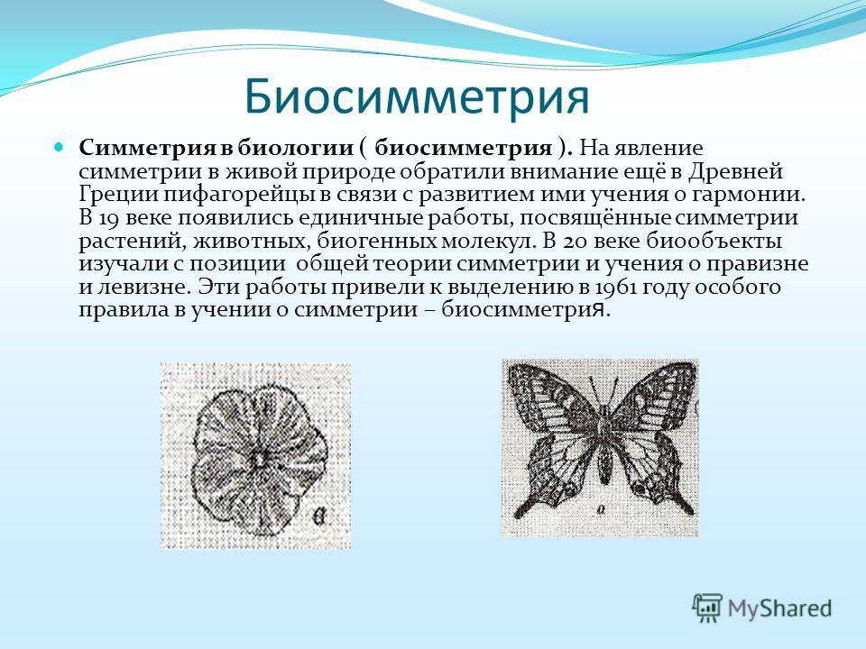 Биосимметрия Симметрия в биологии ( биосимметрия ). На явление симметрии в живой природе обратили внимание ещё в Древней Греции пифагорейцы в связи с развитием ими учения о гармонии. В 19 веке появились единичные работы, посвящённые симметрии растени