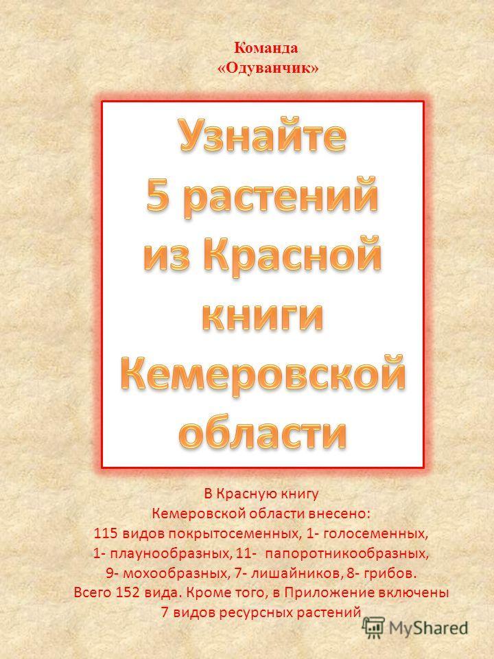 Команда «Одуванчик» В Красную книгу Кемеровской области внесено: 115 видов покрытосеменных, 1- голосеменных, 1- плаунообразных, 11- папоротникообразных, 9- мохообразных, 7- лишайников, 8- грибов. Всего 152 вида. Кроме того, в Приложение включены 7 ви