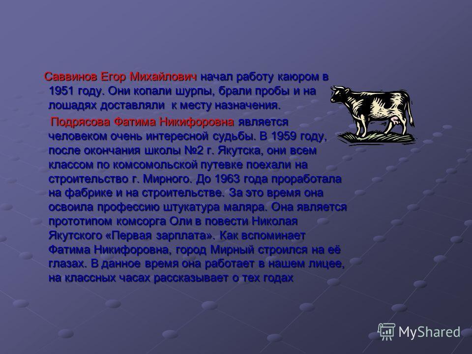 Саввинов Егор Михайлович начал работу каюром в 1951 году. Они копали шурпы, брали пробы и на лошадях доставляли к месту назначения. Саввинов Егор Михайлович начал работу каюром в 1951 году. Они копали шурпы, брали пробы и на лошадях доставляли к мест