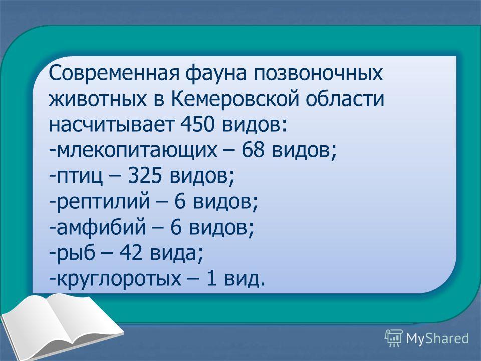Животный мир Кемеровской области (Звери и птицы) Животный мир Кемеровской области (Звери и птицы)