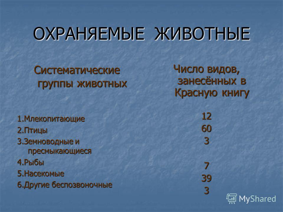 Красная книга Кемеровской области Красная книга Кемеровской области была создана в 2000 году. Она состоит из двух частей: Красная книга Кемеровской области была создана в 2000 году. Она состоит из двух частей: 1.Основная часть (животные, которым гроз