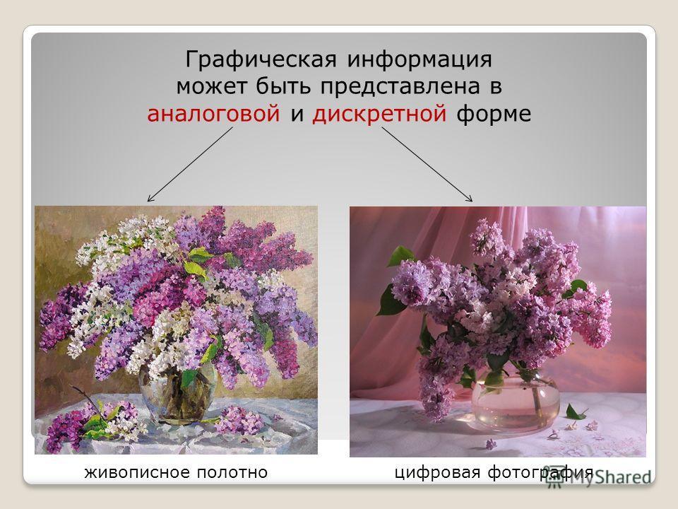 Графическая информация может быть представлена в аналоговой и дискретной форме живописное полотноцифровая фотография