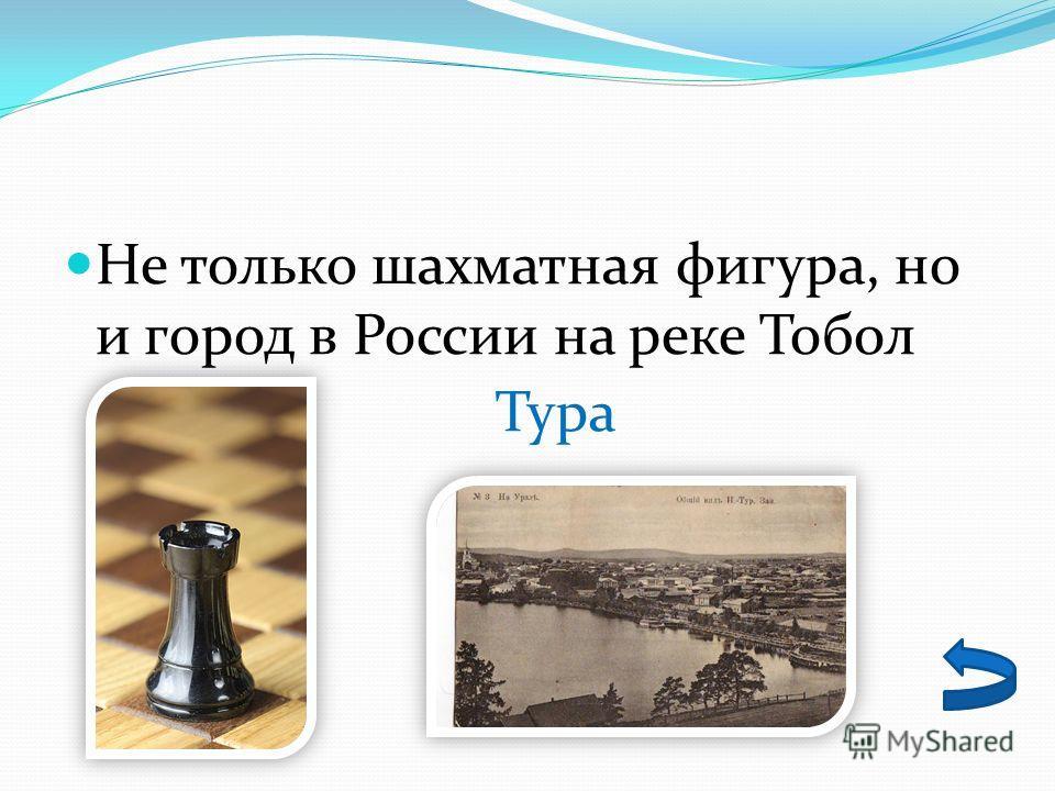 Не только шахматная фигура, но и город в России на реке Тобол Тура