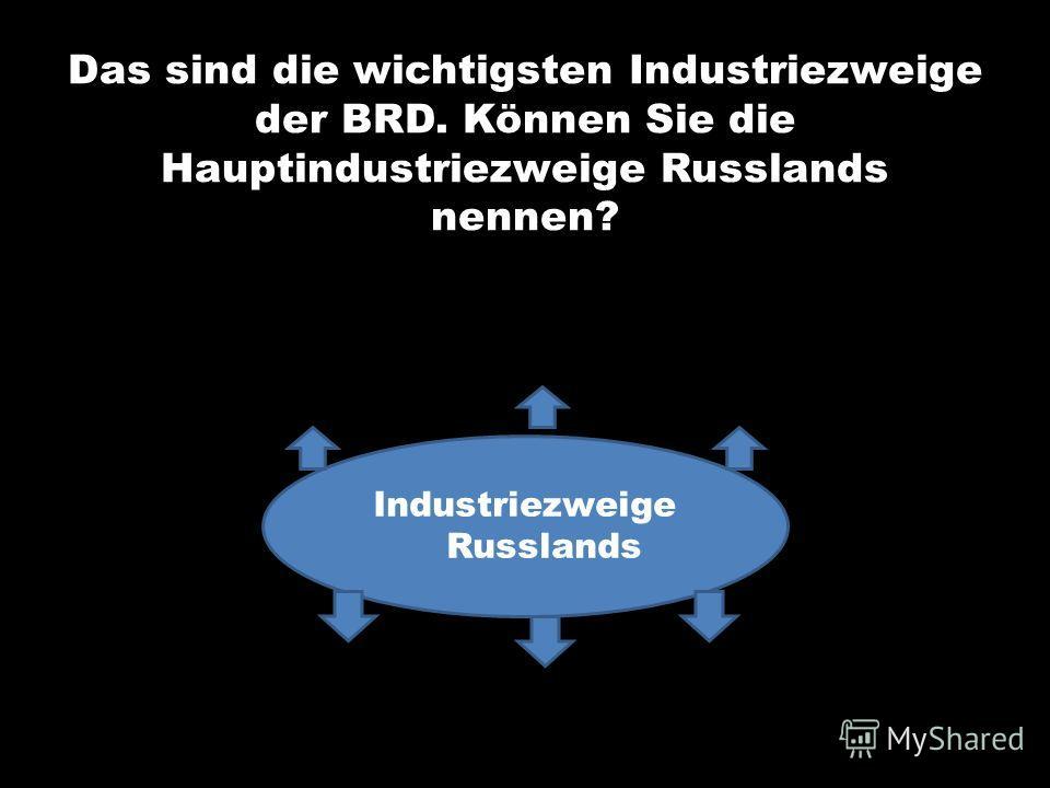 Das sind die wichtigsten Industriezweige der BRD. Können Sie die Hauptindustriezweige Russlands nennen? Industriezweige Russlands