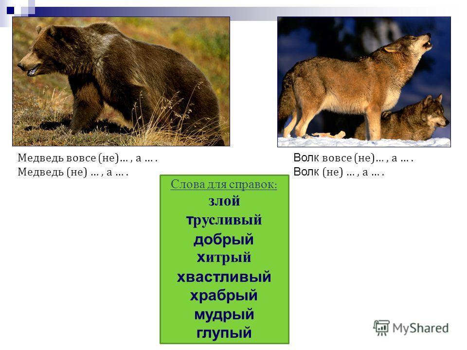 Медведь вовсе (не)…, а …. Медведь (не) …, а …. Слова для справок : злой трусливый добрый хитрый хвастливый храбрый мудрый глупый Волк вовсе (не)…, а …. Волк (не) …, а ….