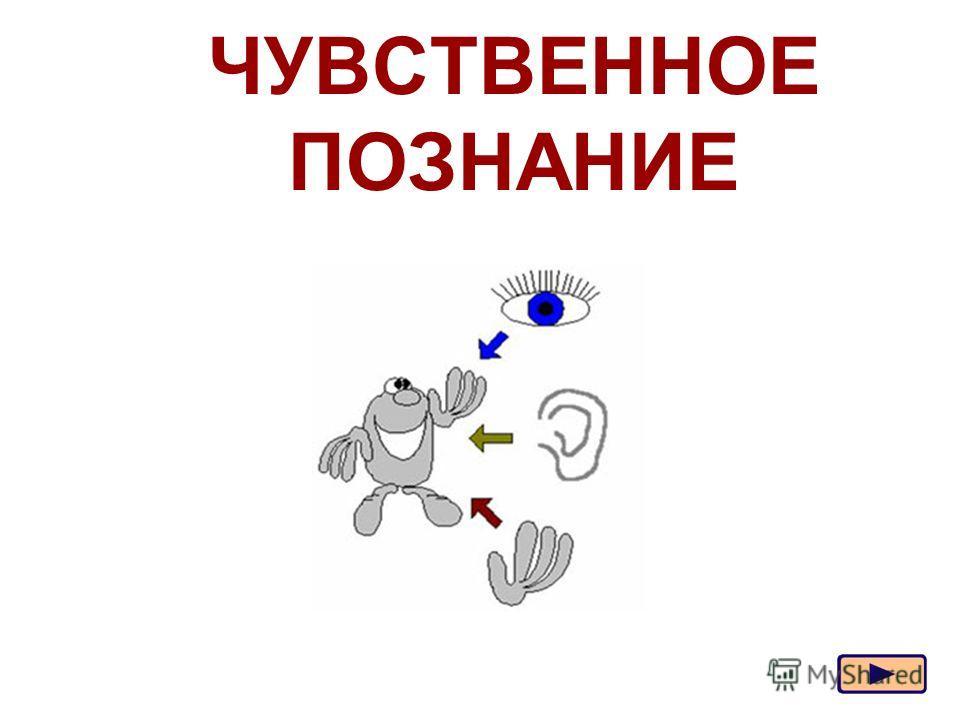 Москва, 2006 г.1 ЧУВСТВЕННОЕ ПОЗНАНИЕ