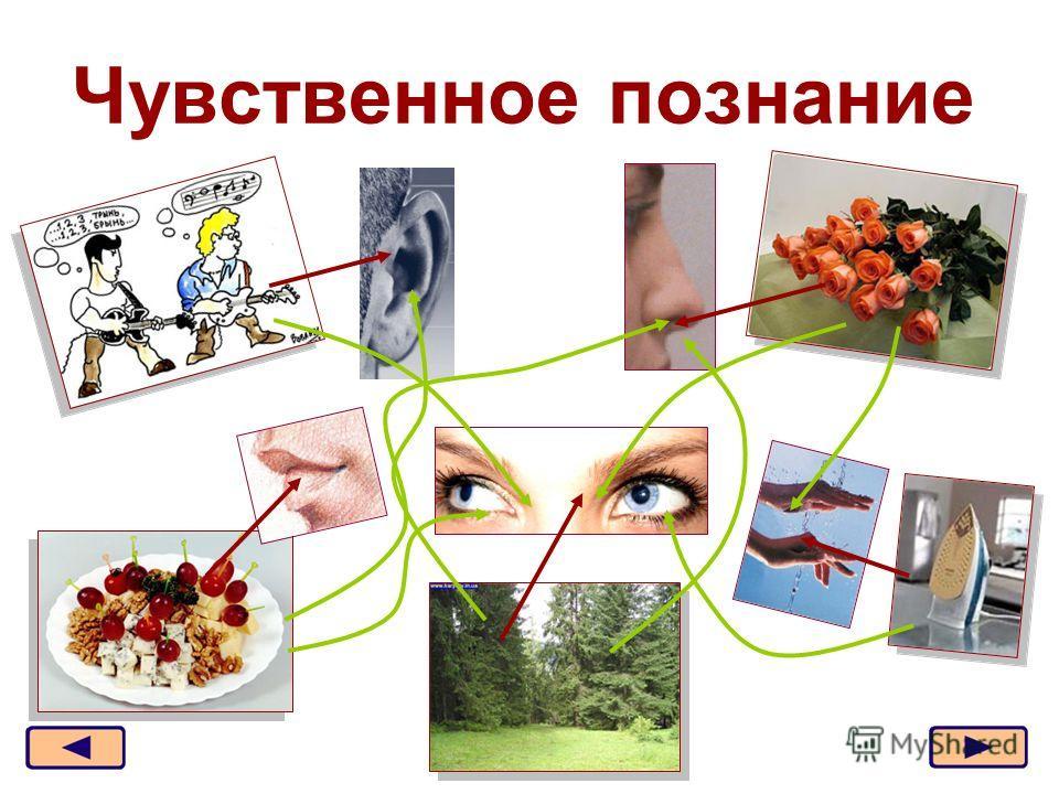 Москва, 2006 г.2 Чувственное познание