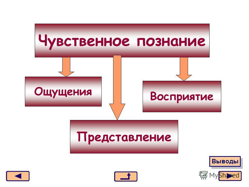 Москва, 2006 г.3 Чувственное познание Ощущения Представление Восприятие Выводы