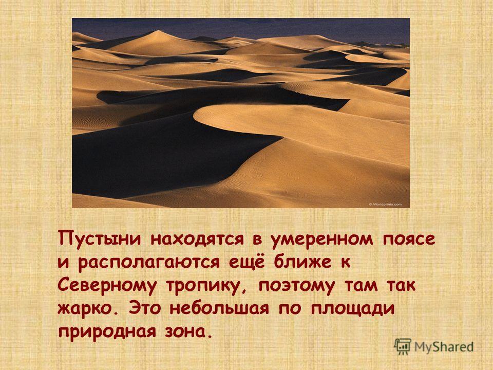 Пустыни находятся в умеренном поясе и располагаются ещё ближе к Северному тропику, поэтому там так жарко. Это небольшая по площади природная зона.