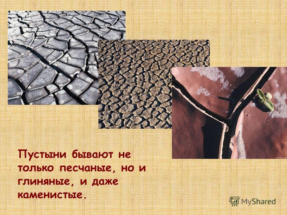 Пустыни бывают не только песчаные, но и глиняные, и даже каменистые.