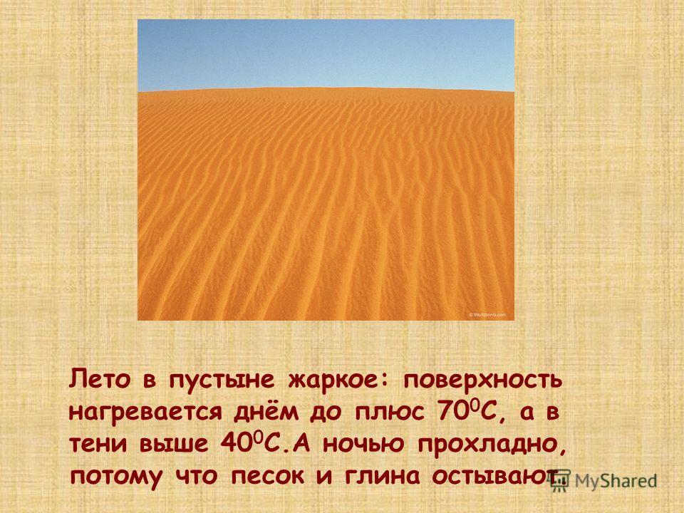 Лето в пустыне жаркое: поверхность нагревается днём до плюс 70 0 С, а в тени выше 40 0 С.А ночью прохладно, потому что песок и глина остывают.