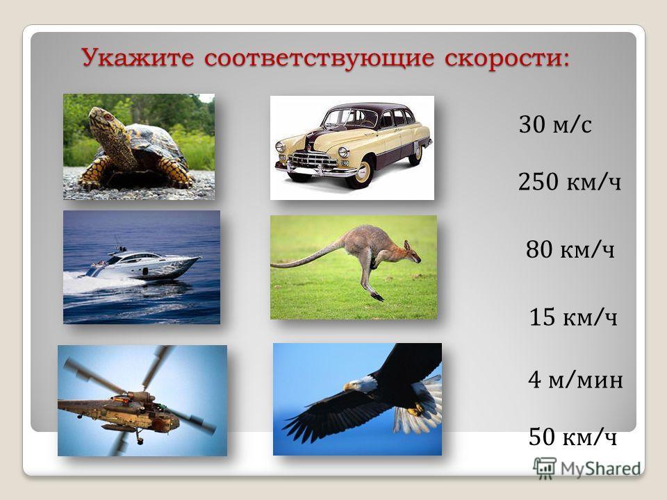 Укажите соответствующие скорости: 30 м / с 250 км / ч 80 км / ч 15 км / ч 4 м / мин 50 км / ч