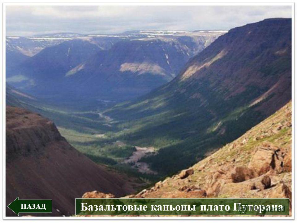НАЗАД Базальтовые каньоны плато Путорана