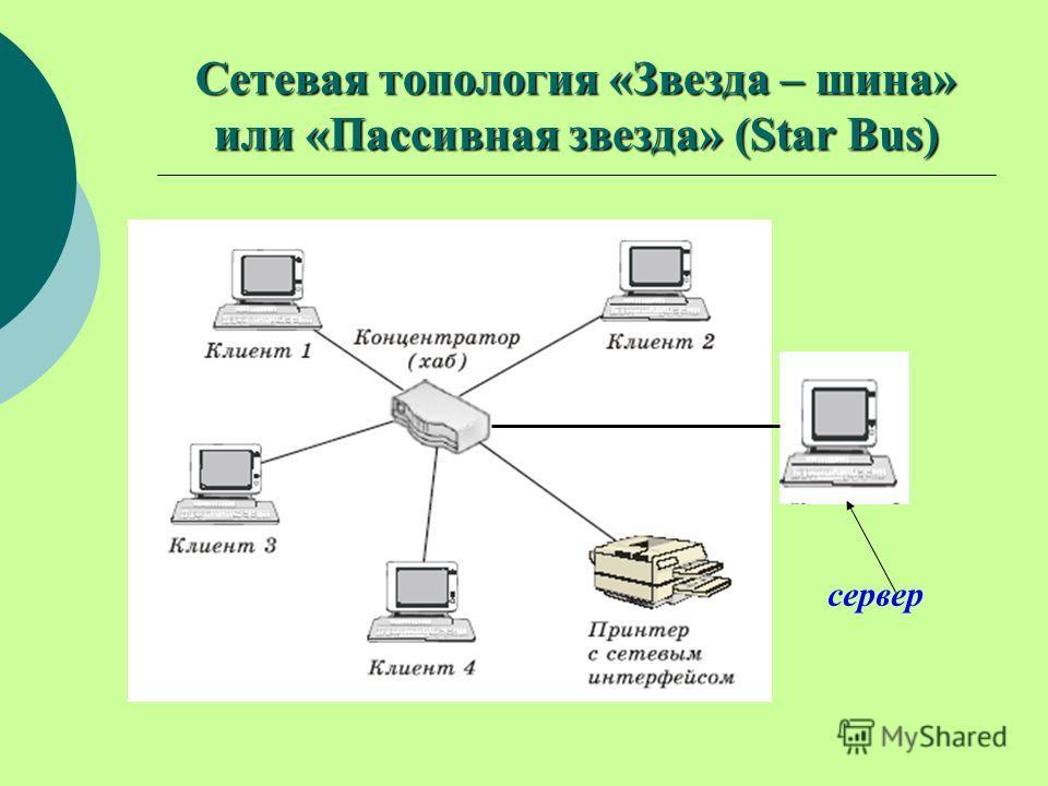 Сетевая топология «Звезда – шина» или «Пассивная звезда» (Star Bus) сервер
