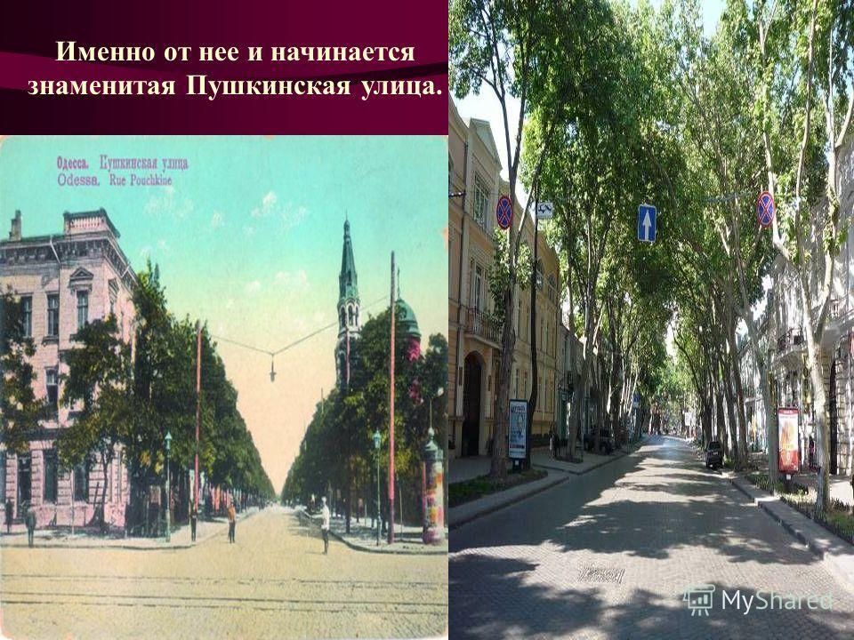 Именно от нее и начинается знаменитая Пушкинская улица.