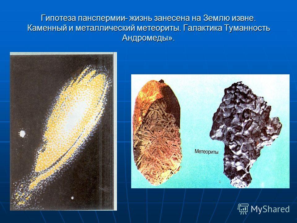 Гипотеза панспермии- жизнь занесена на Землю извне. Каменный и металлический метеориты. Галактика Туманность Андромеды».