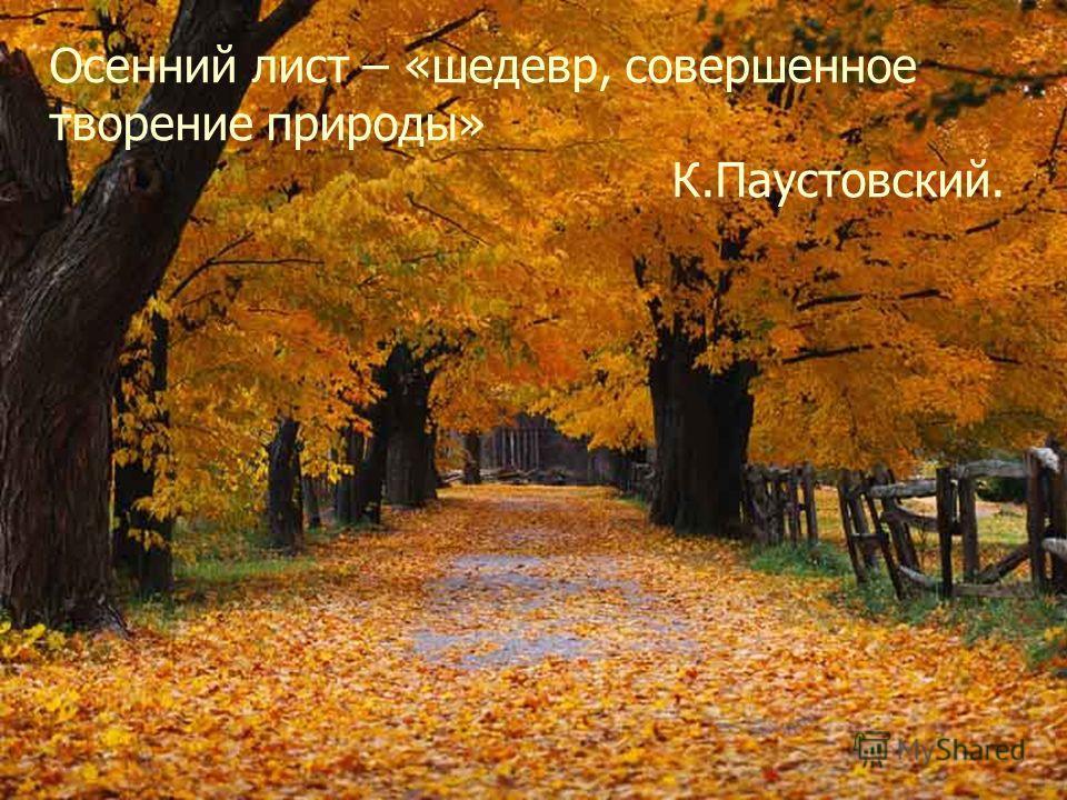 Осенний лист – «шедевр, совершенное творение природы» К.Паустовский.