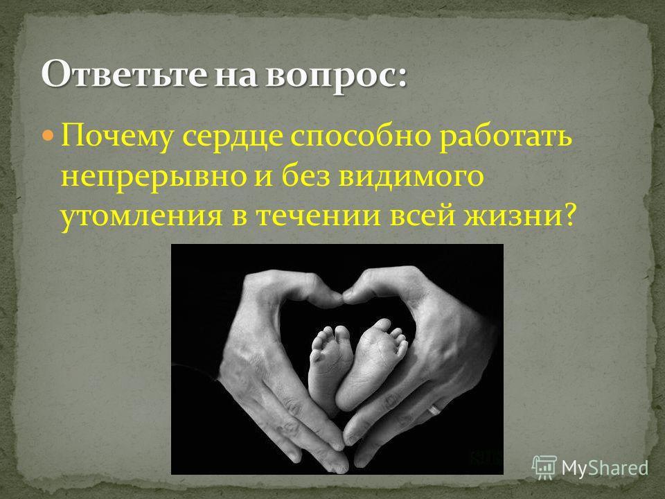 Почему сердце способно работать непрерывно и без видимого утомления в течении всей жизни?