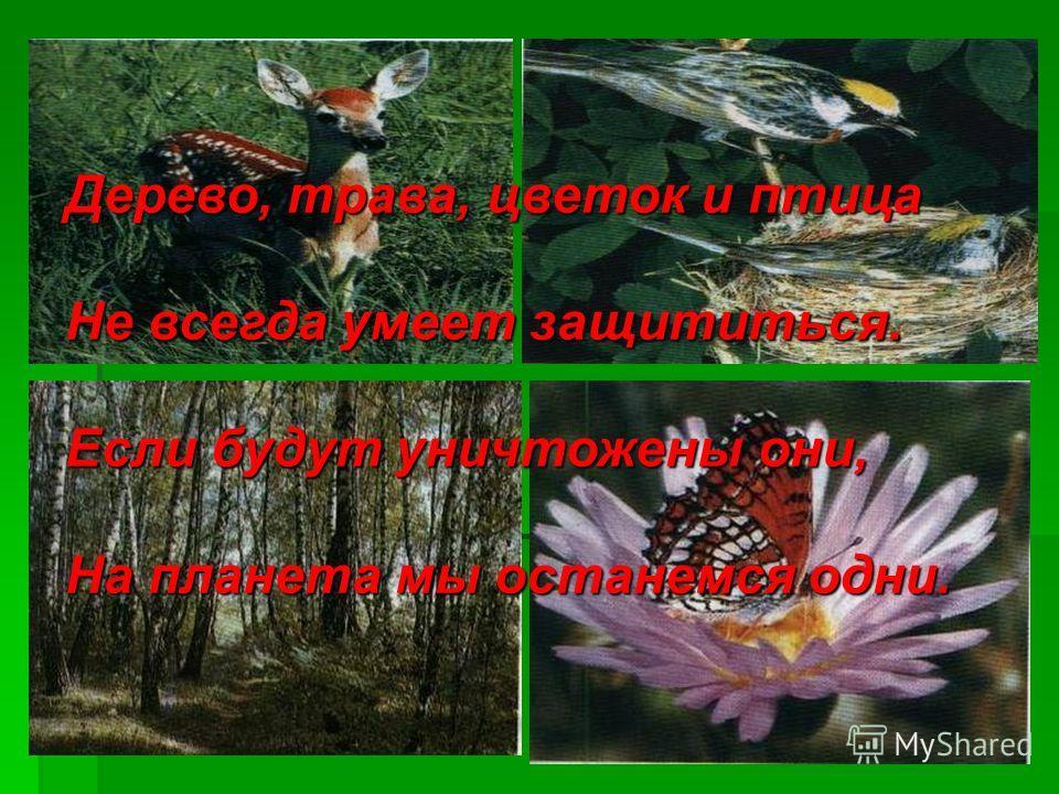 Дерево, трава, цветок и птица Не всегда умеет защититься. Если будут уничтожены они, На планета мы останемся одни.