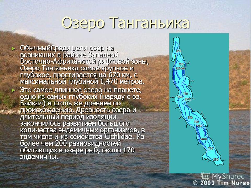 Озеро Танганьика ОбычныйСреди цепи озер на возникших в районе Западной Восточно-Африканской рифтовой зоны, Озеро Танганьика самое крупное и глубокое, простирается на 670 км, с максимальной глубиной 1,470 метров. ОбычныйСреди цепи озер на возникших в