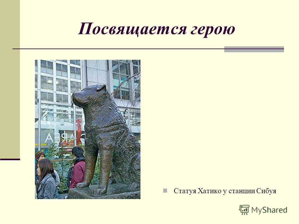 Посвящается герою Статуя Хатико у станции Сибуя