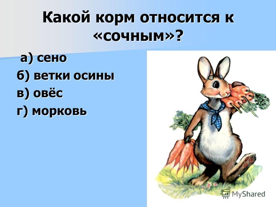 Какой корм относится к «сочным»? а) сено а) сено б) ветки осины в) овёс г) морковь