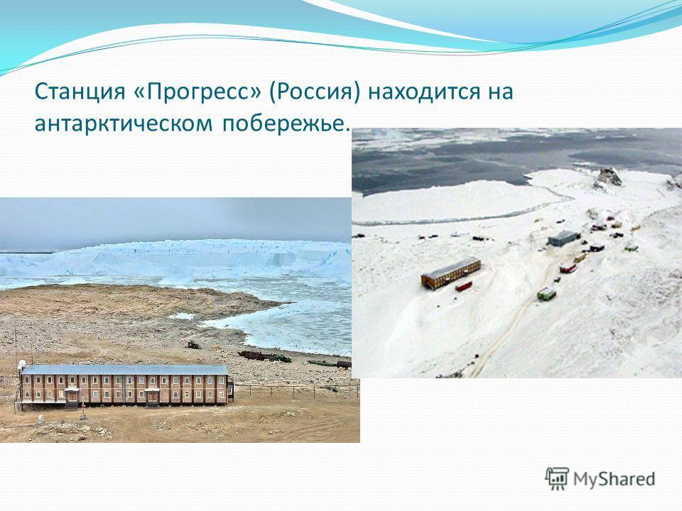 Станция «Прогресс» (Россия) находится на антарктическом побережье.