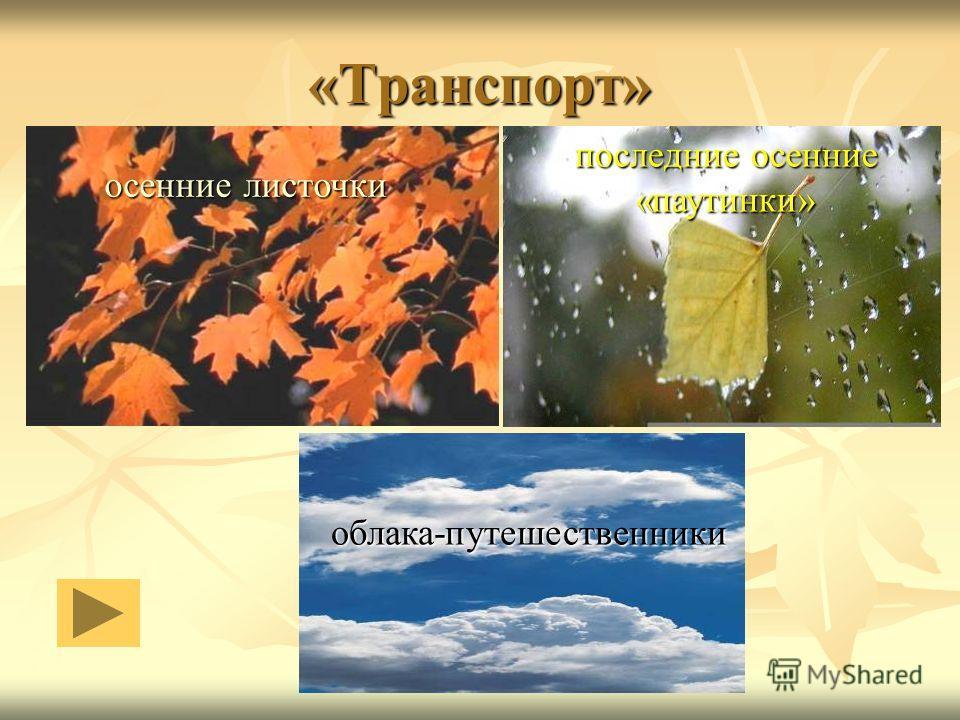 «Транспорт» осенние листочки облака-путешественники последние осенние «паутинки»