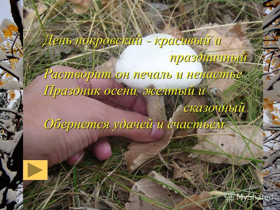 День покровский – красивый и праздничный Растворит он печаль и ненастье. Праздник осени, желтый и сказочный, Обернется удачей и счастьем