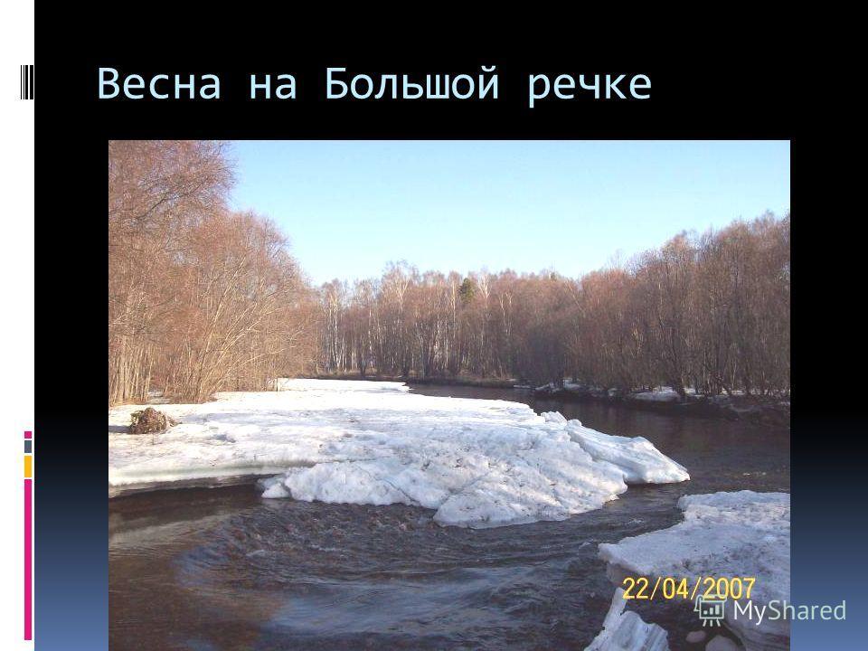 Весна на Большой речке