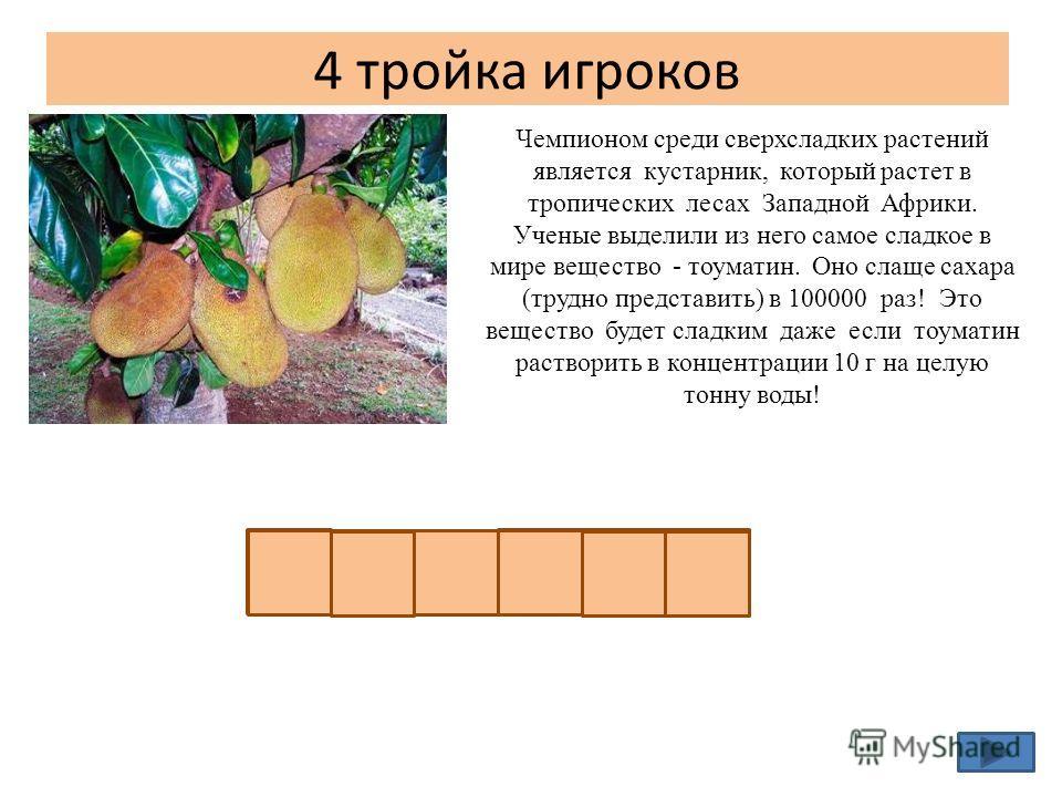 4 тройка игроков Чемпионом среди сверхсладких растений является кустарник, который растет в тропических лесах Западной Африки. Ученые выделили из него самое сладкое в мире вещество - тоуматин. Оно слаще сахара (трудно представить) в 100000 раз! Это в