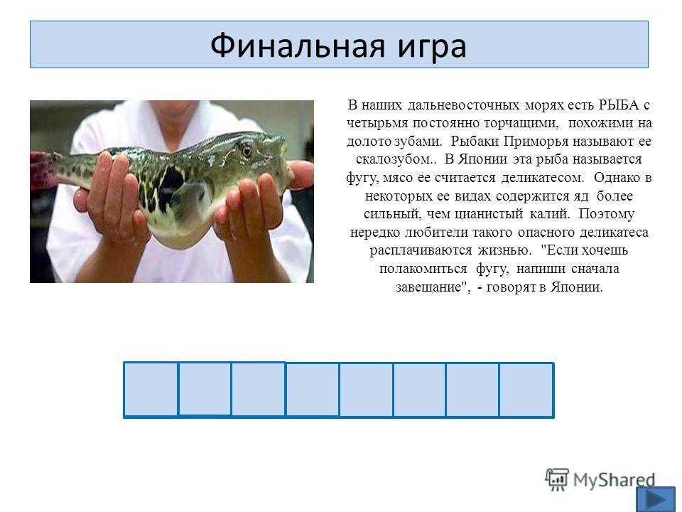 Финальная игра В наших дальневосточных морях есть РЫБА с четырьмя постоянно торчащими, похожими на долото зубами. Рыбаки Приморья называют ее скалозубом.. В Японии эта рыба называется фугу, мясо ее считается деликатесом. Однако в некоторых ее видах с