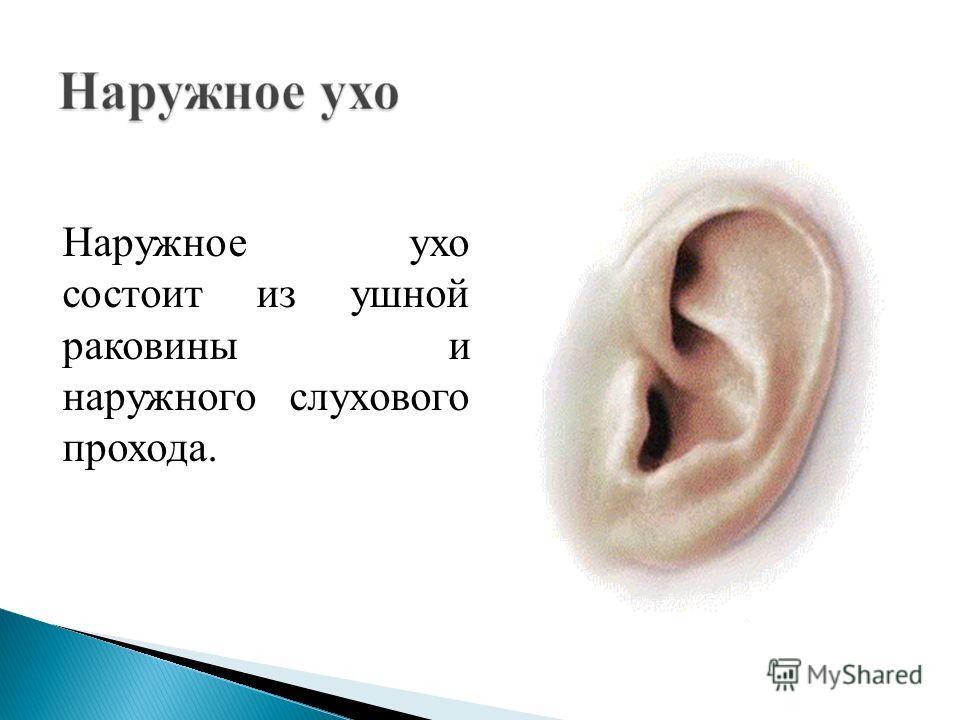 Наружное ухо Среднее ухо Внутреннее ухо