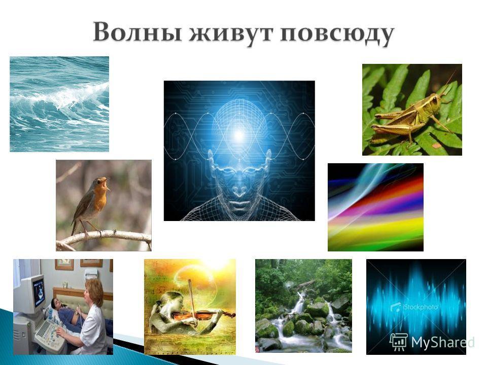 «Везде исследуйте всечасно, Что есть велико и прекрасно» М. В. Ломоносов