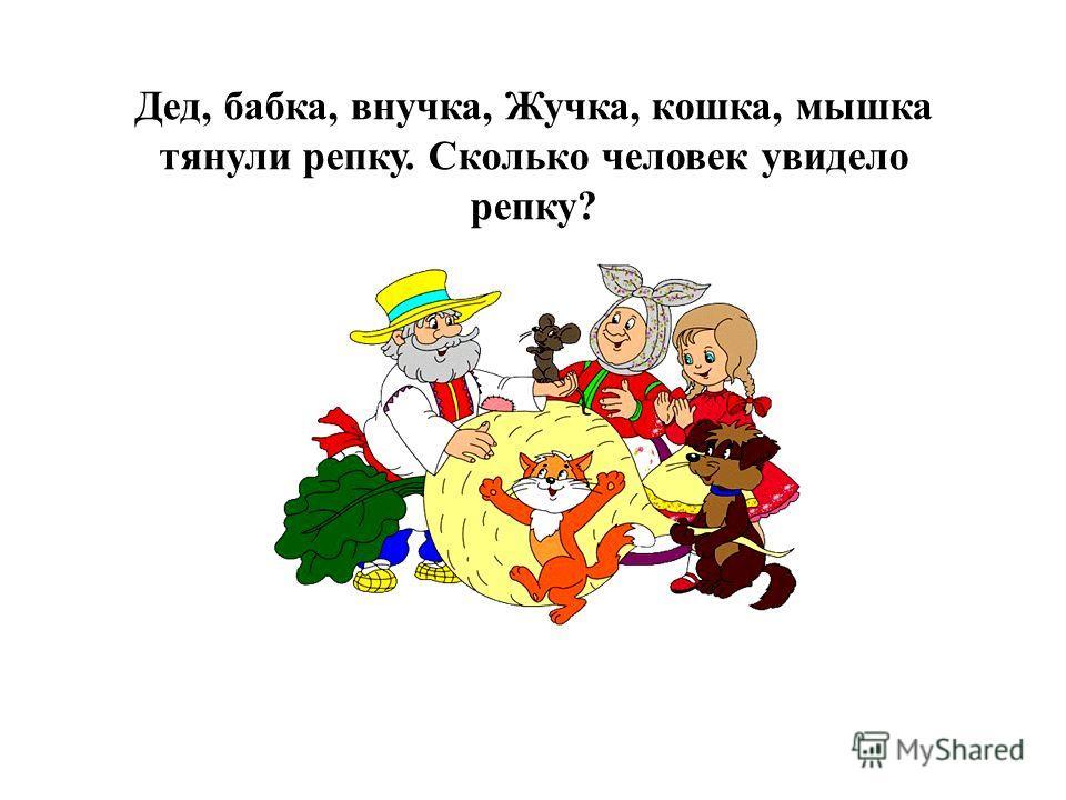 Дед, бабка, внучка, Жучка, кошка, мышка тянули репку. Сколько человек увидело репку?
