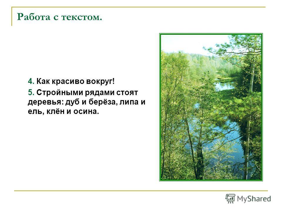 Работа с текстом. 4. Как красиво вокруг! 5. Стройными рядами стоят деревья: дуб и берёза, липа и ель, клён и осина.